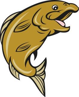 trout_web1
