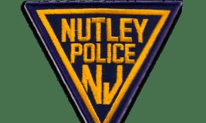 nutleypatch-clr