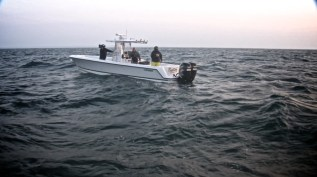 Cape Cod 045