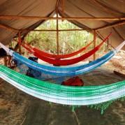 Jungle accommodations