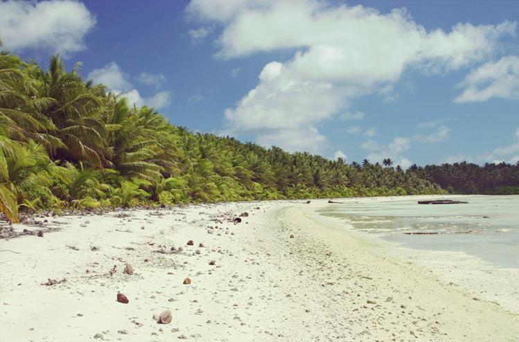 Bad Voyage: 6 îles les plus meurtrières du monde