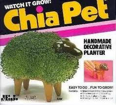 chia pet, roswell, new mexico, ufo