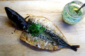 Grilled mackerel with lemon garlic dressing by Theo Michaels