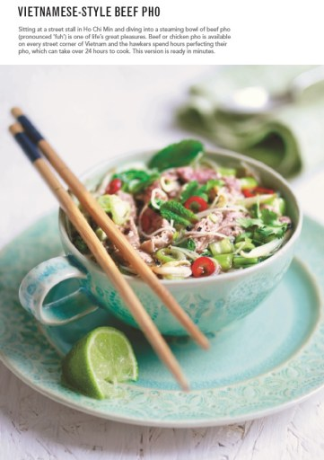 vietnamese-beef-pho-by-theo-michaels-microwave-mug-meals