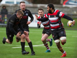 Stirling County kick-off their season at home to Southern Knights on Saturday afternoon. Image: Bryan Robertson
