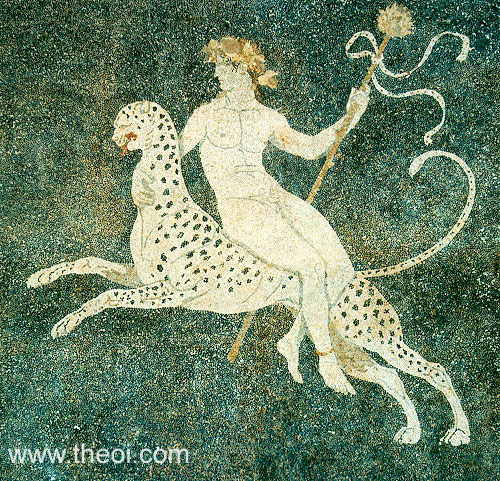 Dionysus riding panther | Greek mosaic from Pella C4th B.C. | Pella Archaeological Museum