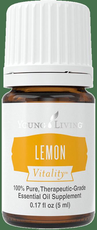 Lime Tip Dracaena Lemon