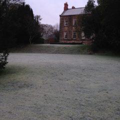 Frosty morning 2014