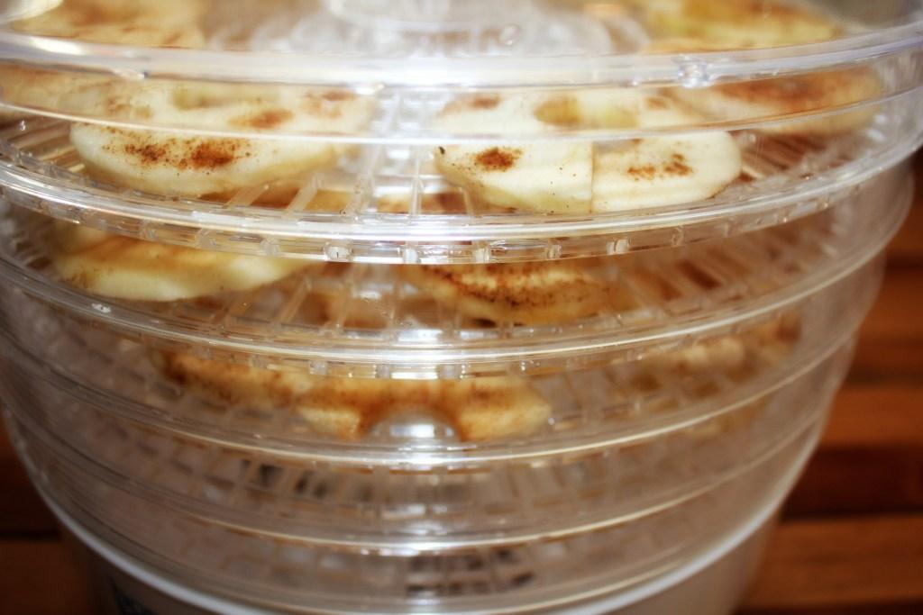 apple-slice-dehydrator