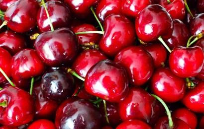 Cherry, lemon & olive oil  Visitandine (financiers)
