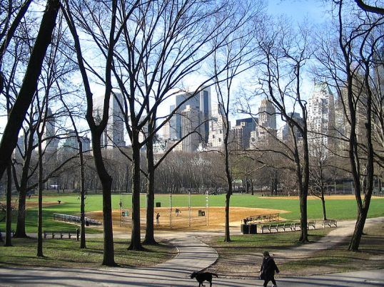 """Central park2"" by Albert kok -©Wikimedia image commons"