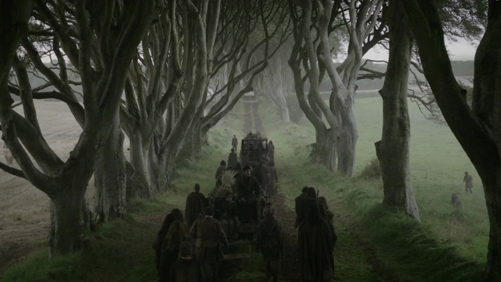 Dark hedges of Armoy - Game of Thrones Series 2 Episode 1©horslips5 - https://www.flickr.com/photos/67165210@N00/7570159916
