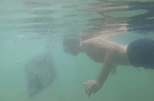 Be Green Ocean - Coralie Balmy - Exposition sous marine - Photos d'Antoise Repessé