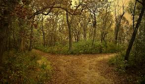 journey, road, path