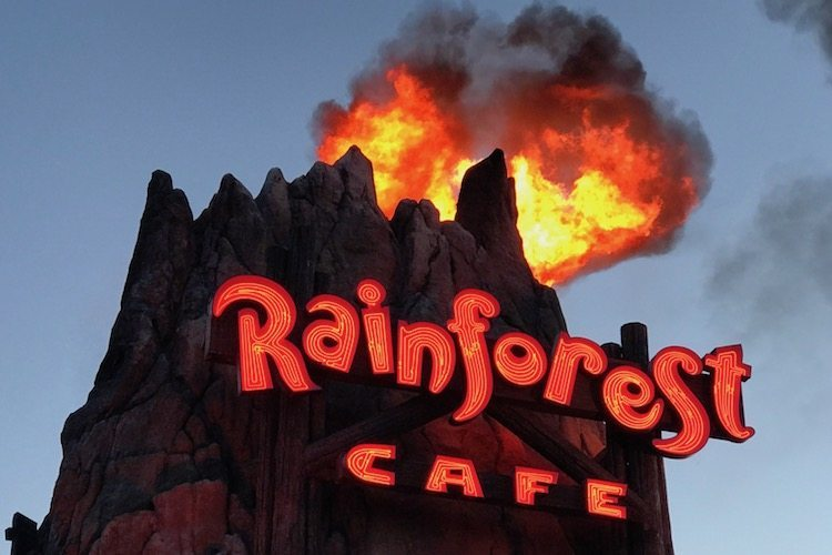 What to see at Disney Springs include an erupting volcano at the Rainforest Cafe and admission to Disney Springs is free.