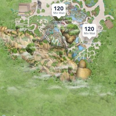 Visiting Disney Pandora? Why You Should Skip the Rope Drop