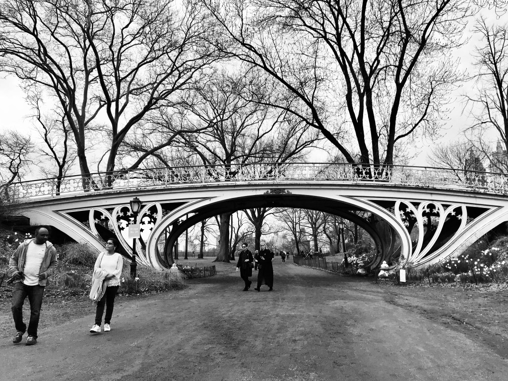 Gothic Bridge in New York's Central Park during cherry blossom season.