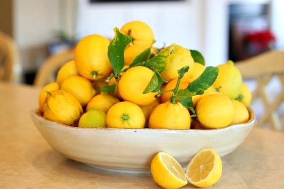 Lemon Vanilla Creme Brûlée