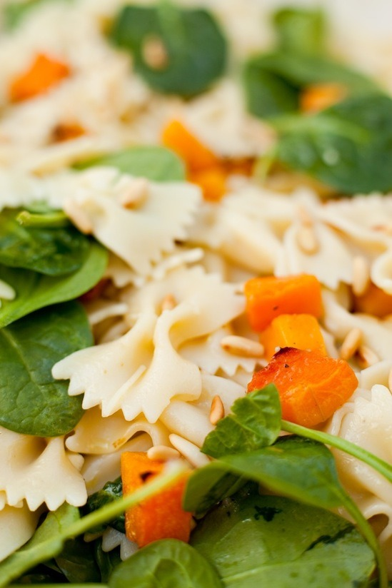Farfalle Pasta with Roasted Butternut Squash from www.theorganickitchen.org