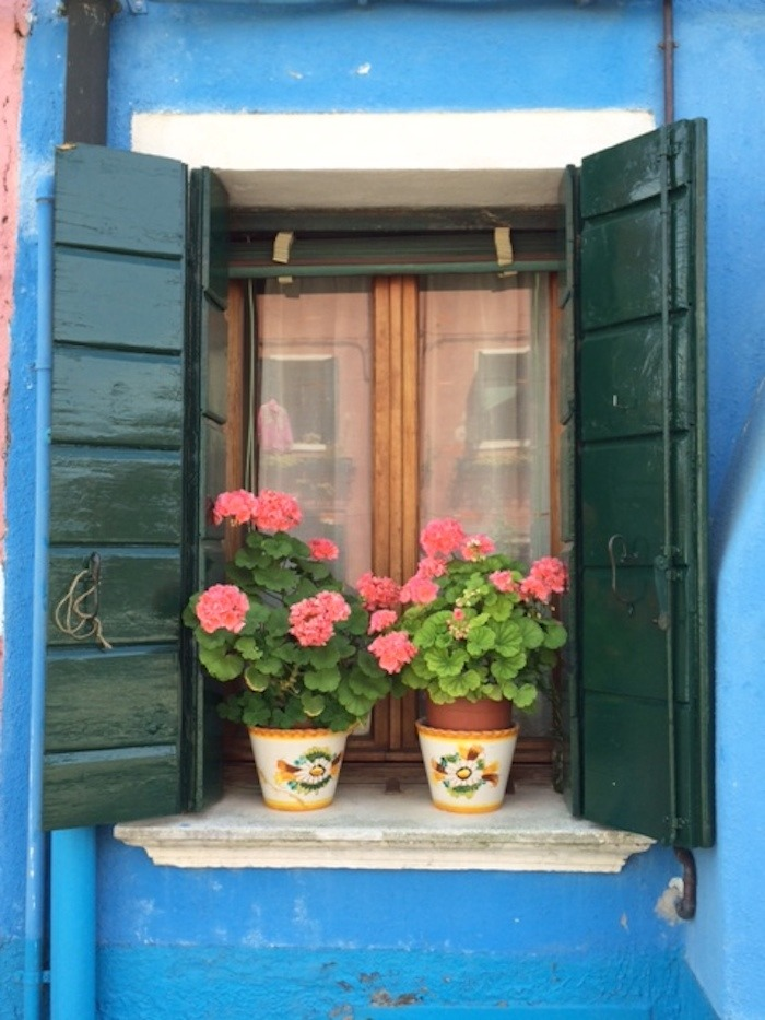 A beautiful window with flower pots in Burano Italy