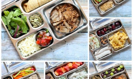 Healthy Back to School Lunch Ideas Moms and Kids Will Love!