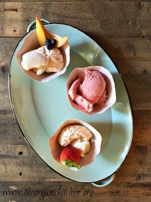 Simple No Cook Homemade Ice Cream