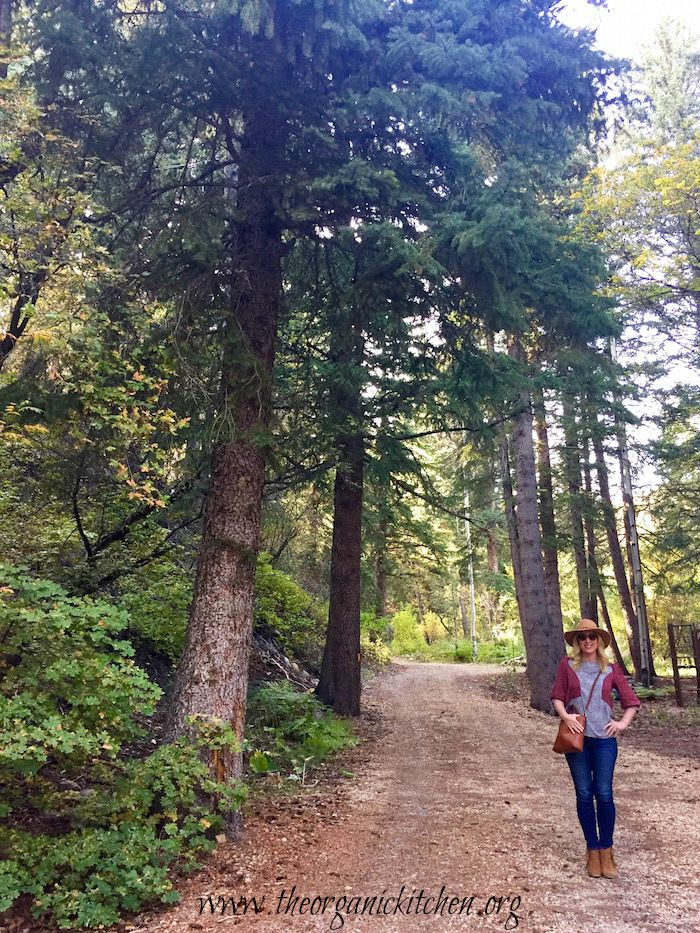 A woman wearing a hat standing in a forrest of pine trees