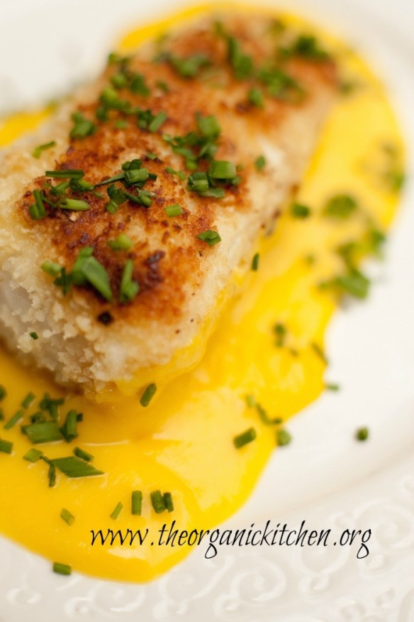 This Macadamia Nut Crusted Halibut with Mango Sauce is our favorite way to eat this delicious, delicate fish! It's light and flakey and when cooked properly, is tender and moist.