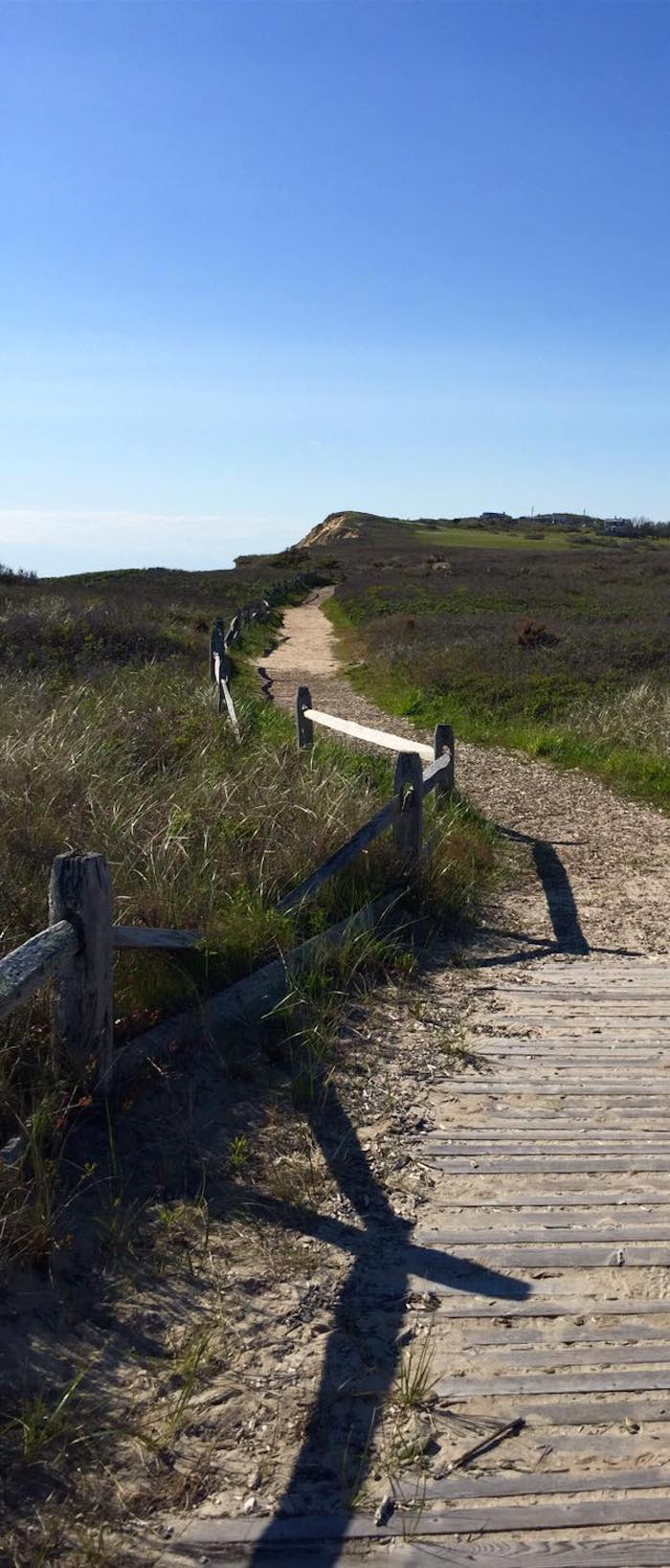 A beach pathway with fence on Martha's Vineyard