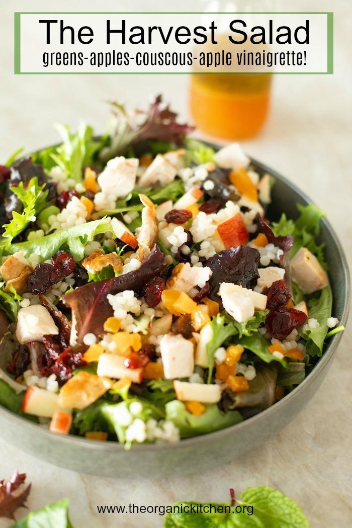 The Harvest Salad: Greens, Couscous, Fall Fruit and Apple Vinaigrette #salad #applevinaigrette