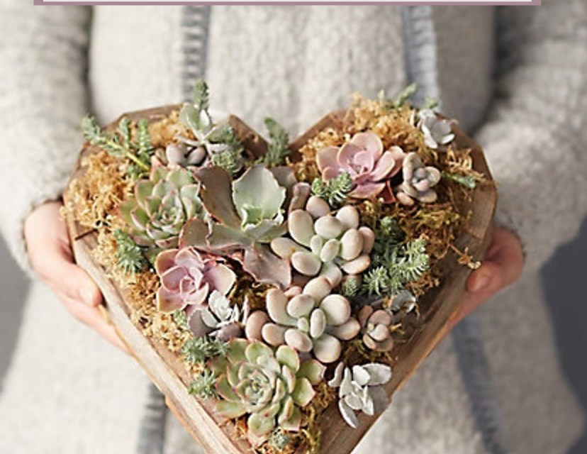 Valentine Gift Picks~2017!