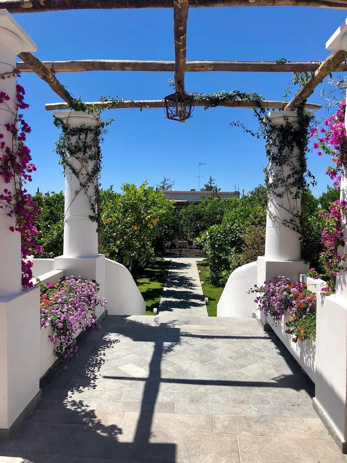 A beautiful sculpted garden and wood pergola on the Island of Capri