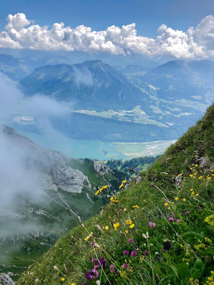 Traditional Swiss Rosti! #Whole30 #Easy #Glutenfree #potatofritter #hashbrowns