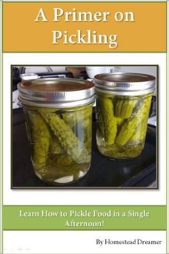 A Primer on Pickling