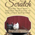 Chickens from Scratch