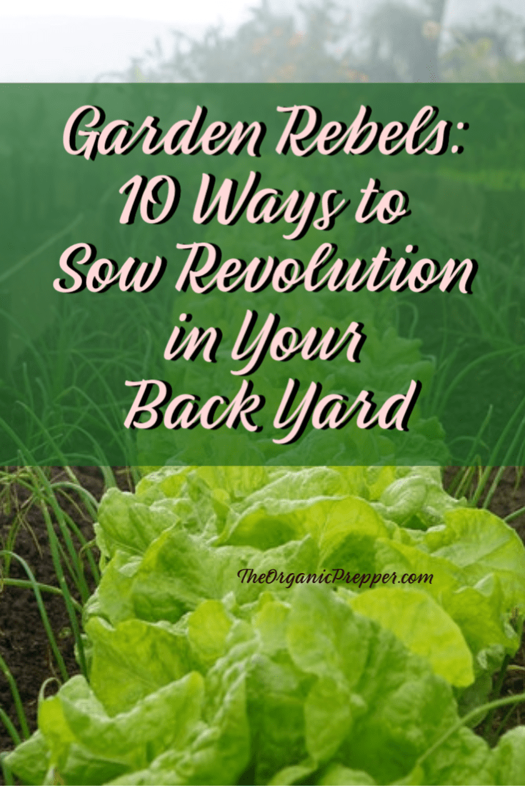Sometimes I think that the next Revolutionary War will take place in a vegetable garden and that the rebels will be gardeners. | The Organic Prepper