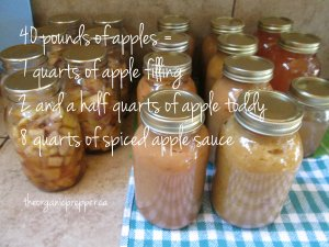 canning a bushel of apples