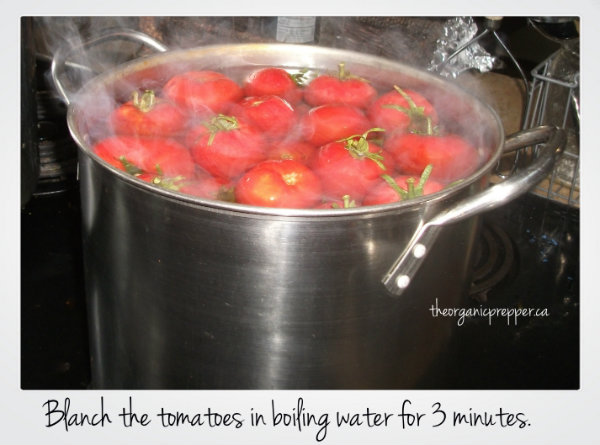 Blanch the tomatoes in boiling water