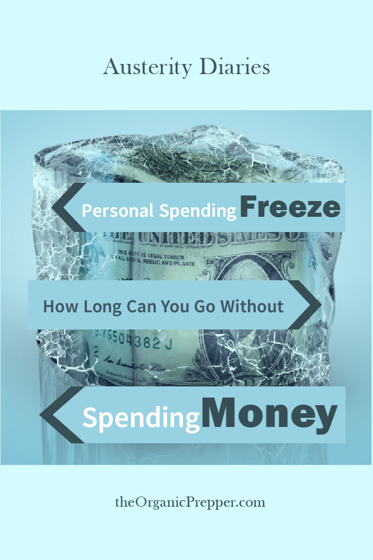 Personal Spending Freeze: How Long Can You Go Without Spending Money?