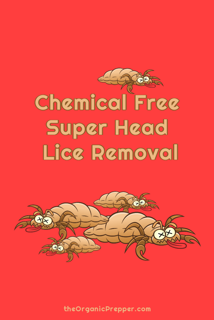 Chemical Free Super Head Lice Removal | Wet combing is a non-toxic, simple head lice removal method that even gets rid of treatment-resistant "|735|1100|?|2fa4a98210d48dc6a528c2ab358b2050|False|UNLIKELY|0.4130077362060547