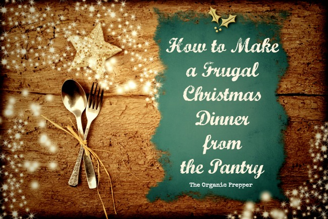 A frugal Christmas dinner...that doesn\'t sound like much fun, does it? Holiday meals have become a license to overspend, but it can be festive AND frugal.