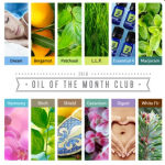 Oil of the Month Club Top Sellers