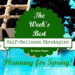 Feb 11 Self Reliance Strategies