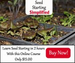 Seed Starting Banner $15 300x250