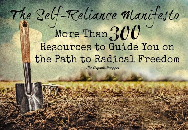 More than 300 resources to guide you on the path to radical freedom. What will be your first step towards greater self-reliance and liberty from the system?