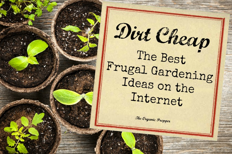 Ordinaire Dirt Cheap: The Best Frugal Gardening Ideas On The Internet   The Organic  Prepper