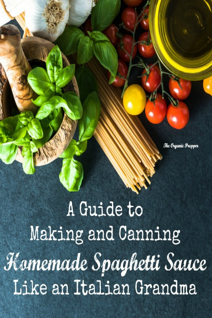 Here is a step by step for making and canning your own delicious homemade spaghetti sauce. You\'ll never eat storebought again!