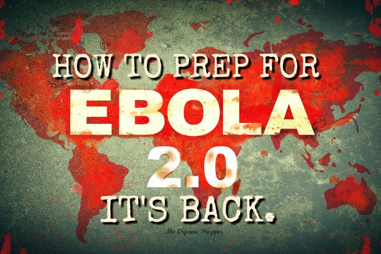 Here\'s what you need to know about the possibility of Ebola spreading to American shores again - and how to prepare in case it happens.