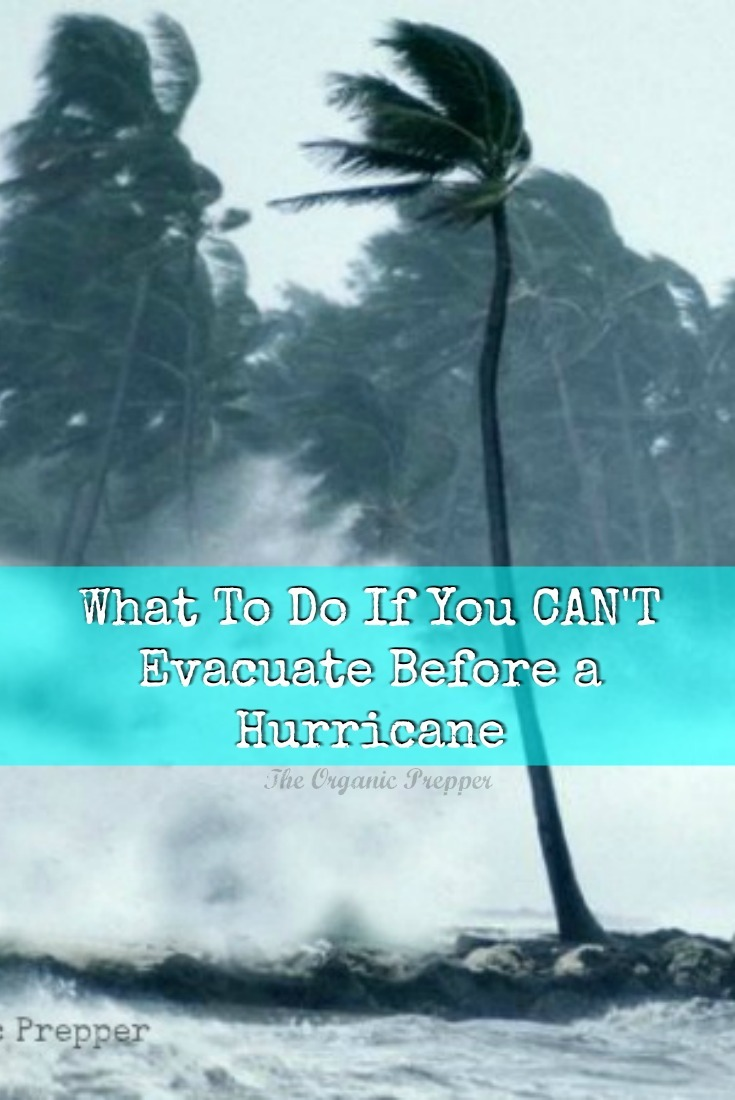 What To Do If It's TOO LATE and You Can't Evacuate Before a Hurricane