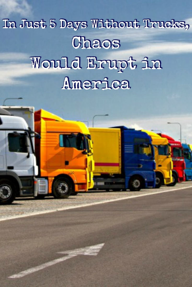 This video shows how, in only 5 days without trucks delivering supplies, our country could devolve into utter chaos.